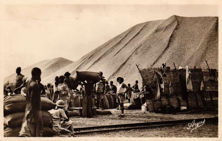 Manutention d'arachide sur le port de Kaolack