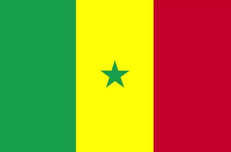 Le Sénégal aux JO de Tokyo : tout ce qu'il faut retenir